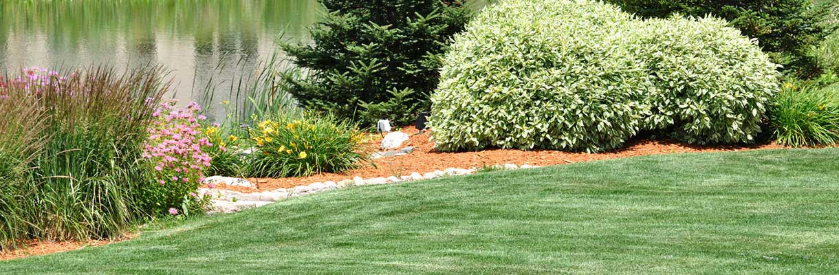 Central PA Lawn Fertilization Services